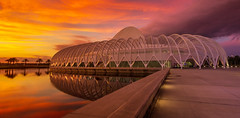 Sunset Polytech-124-Pano gold (Photos By The Bay) Tags: florida polytechnic university lakeland polk usa college clouds weather night canon