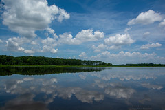 Perfect Day (AnthonyVanSchoor) Tags: anthonyvanschoor maryland usa reflection blackwaternationalwildliferefuge clouds nikon d7100