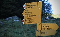 C'est parti pour le lac du Grand Désert (bulbocode909) Tags: valais suisse siviez montagnes nature forêts arbres panneaux jaune vert nendaz