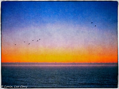 Horizon Series 40 (lorinleecary) Tags: composite california manipulatedimage ocean sunsets horizons bird cambria textured lines digitalart centralcoastcalifornia sea