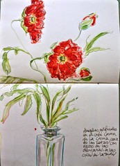 Artificial poppies in a Seville café. (Happy Sketcher) Tags: drawing illustration sketch watercolour flowers