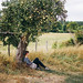 Haning out under the apple tree