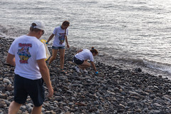 Beach clean up Palm-Mar Tenerife (Canary Green) Tags: enviroment animals rescue enviromentalfriendly beachcleanup tenerife palmmar south jardintropical canarygreen canarypr ileanairenerusconi