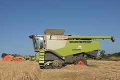 Claas Lexion 670 TT Combine Harvester cutting Winter Barley (Shane Casey CK25) Tags: claas lexion 670 tt combine harvester cutting winter barley terra trac roberts cove green grain harvest grain2018 grain18 harvest2018 harvest18 corn2018 corn crop tillage crops cereal cereals golden straw dust chaff county cork ireland irish farm farmer farming agri agriculture contractor field ground soil earth work working horse power horsepower hp pull pulling cut knife blade blades machine machinery collect collecting mähdrescher cosechadora moissonneusebatteuse kombajny zbożowe kombajn maaidorser mietitrebbia nikon d7200