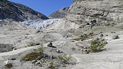 Nigardsbreen | Wanderung (globetrotter-unterwegs) Tags: reise travel globetrotterunterwegs 2018 norwegen norway nigardsbreen gletscher glacier wanderung hiking