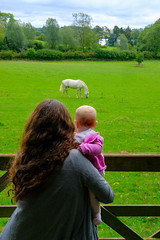 Molly and Jodie looking at horses (timnutt) Tags: molly northamptonshire baby 35f2wr midlands 35mm fujifilm animal garden xt2 child people gardens fuji pony gate cotonmanor horse manor field