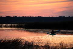 Sunrise Kayaker (NicoleW0000) Tags: sunrise lake water bay kayak kayaker paddle silhouette colourful colorful colors colours sky landscapephotography naturephotography ontario summer morning