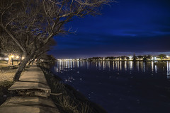 In the loneliness of the night, only the lights and the way back. (Ramiro Francisco Campello) Tags: carmendepatagones ríonegro costanera noche luces lights citylights path camino arbol arboles tree trees water river boat shore orilla soledad oscuridad shadows ramirofranciscocampello grenuol argentina buenos aires bahía blanca viedma