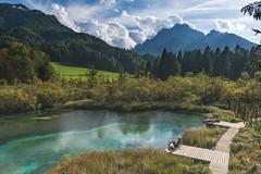 Clear source of water (D Boel & fam.) Tags: slovenië slovenia zelenci lake water source natural park nature
