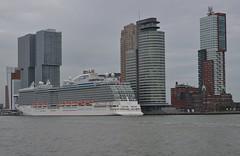 Royal Princess (Hugo Sluimer) Tags: royalprincess portofrotterdam port haven rotterdam zuidholland holland princesscruisesline princess princesscruises cruiseship cruise cruises cruiseterminalrotterdam cruiser cruiseterminal cruiseschip