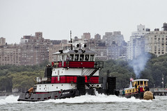 r_180909216_beat0075_a (Mitch Waxman) Tags: 2018greatnorthrivertugboatrace hudsonriver manhattan tugboat workingharborcommittee newyork