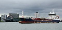 BESIKTAS ORIENT (kees torn) Tags: vaartochtpiethein2018 europoort botlek tug calandkanaal havendienstrijnmond