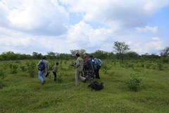 IMG_6160 (mohandep) Tags: hessarghatta lakes karnataka butterflies birding nature wildlife insects signs food