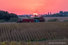 Harvesting at sunset (Thomas DeHoff) Tags: sunset soybeans harvest illinois sony a77m2