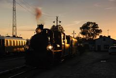 Evening arrival (DoctorMP) Tags: parowoy parowóz px481756 średzka kolej poiatowa wąskotorowa pociąg wielkopolska polska lato dampfloks dampflok steam trains railway narrowgauge sunset summer