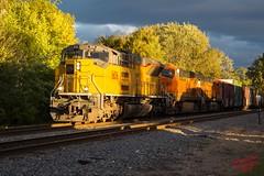 Slivers of Sunlight (ilvchevs) Tags: train trains railroad emd emdx bnsf cn trees clouds shade sunlight tier4