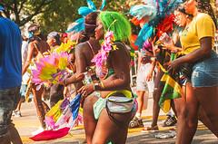 1364_0630FL (davidben33) Tags: brooklyn new york labor day caribbean parade festival music dance joy costume maskara people women men boy girls street photos nikon nikkor portrait