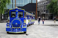 Tourist Train (Hindrik S) Tags: train trein zug blue tourist toerist guest gast leeuwarden ljouwert liwwadden 2018 kh2018 lf2018 dschx90v sony sonyphotographing zaailand saailân square plein platz
