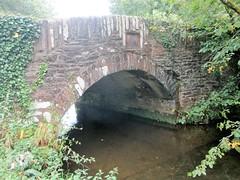 Yeo Bridge Totnes (Bridgemarker Tim) Tags: devonbridges totnes yeo bridgemarkers