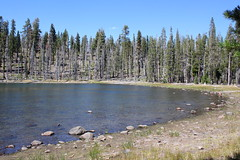 Little Bear Lake (rozoneill) Tags: assen volcanic national park california hiking twin lakes upper lower cluster pacific crest trail