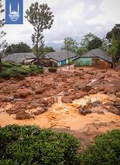 Slush deposition due to landslides near Padi Estate of Meppadi Kottapadi Village_Wayanad district