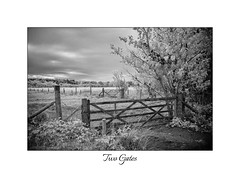 Two Gates (<Derek>) Tags: gates fence fields trees infrared convertedcamera 720nm monochrome mono blackandwhite bw