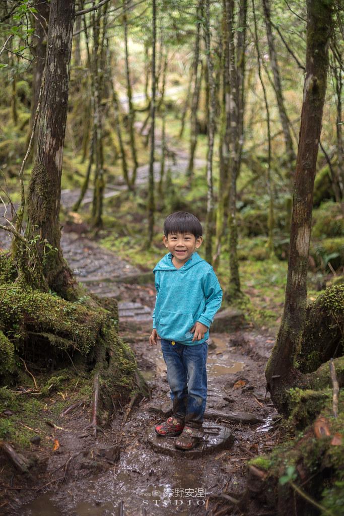 太平山翠峰湖環山步道 |走在泥濘的道路上,只為途中美景 | 宜蘭大同鄉48