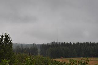 Grey summer skies