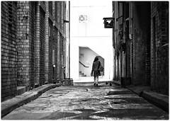 Going home (gro57074@bigpond.net.au) Tags: urbangrunge urban f50 105mmf14 artseries sigma d850 nikon black alleyways streetphotography street cold dark cbd sydney grunge alley alleyway grain monotone monochrome mono bw
