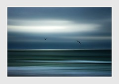 Voice of the Sea (Christina's World Off and On) Tags: icm outdoors ocean sandiego scenic sky sea seascape serene seagulls flying birds border blue