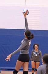 IMG_1829 (SJH Foto) Tags: girls high school volleyball teens team east stroudsburg varsity spike burst mode contact impact