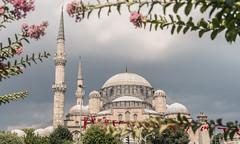 ESTAMBUL-67 (Jorge kaplan) Tags: 2018 28300mm d750 estambul istanbul nikon nikond750 turkey turquia türkiye viaje