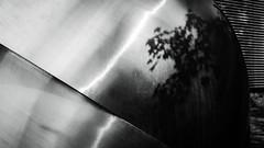 """Ernst Hermanns""""Zwei gegeneinander verschobene Halbkugeln"""", 1977 (frankdorgathen) Tags: bottrop ruhrgebiet ruhrpott quadrat josefalbersmuseum building sculpture skulptur shadow schatten tree baum blackandwhite monochrome schwarzweis schwarzweiss"""