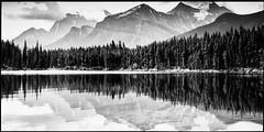 Herbert Lake Pano (greenschist) Tags: 6x12 canadianrockies panoramic mountains herbertlake forest alberta reflections blackwhite canada clouds trees banffnationalpark glaciers