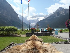 Lake Louise Summer  #hbm (Mr. Happy Face - Peace :)) Tags: albertabound cans2s rockies banff alberta canada lakelouise summer art2018 scenery landscape river lake sky clouds mountains trees forest fairmount chateau hotel benchmonday happybenchmonday strangers grizzly bear awareness canadaparks nwn
