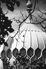 A dome in the trees (Anthony P.26) Tags: architecture brighton category eastsussex england external places royalpavilion travel architecturephotography building palace blackandwhite whiteandblack mono monochrome frame tree trees branches canon1585mm canon70d canon outdoor travelphotography