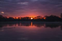 A Cambidgeshire Dawn (CraDorPhoto) Tags: canon6d dawn sunrise sun silhouette water lake reflection calm redsky clouds cambrdigeshire uk
