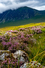 Near Glencoe Mountain Resort (jmyhall) Tags: ballachulish jh location people photographers scotland unitedkingdom