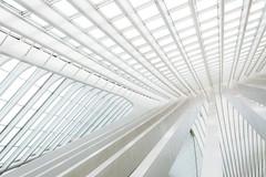 White lines (Maerten Prins) Tags: belgium luik liege liègeguillemins railwaystation santiagocalatrava calatrava lines curves minimal abstract contrast hall arch arches new white light skew pattern geometry