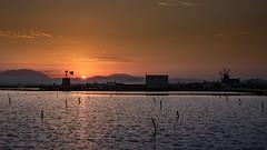 sunrise in the saltworks - Trapani - Italy (I. Bellomo) Tags: saltworks trapani salina sea mare mediterranean landscape sunrise sunset alba tramonto red blu fujifilm