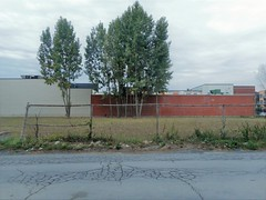 Lot for Sale (navejo) Tags: montreal quebec canada beaumont lot field trees building fence road wall