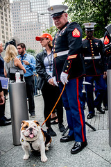 9.11.2018-4(NYC) (bigbuddy1988) Tags: people portrait photography nikon d800 usa nyc city new art manhattan urban military marines dog bulldog pet friends newyork 9112018