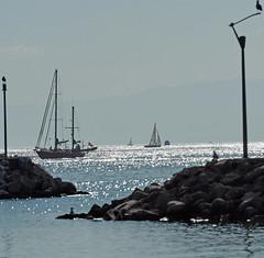 Lausanne, Vaud, Switzerland, Geneva Lake (photoriel) Tags: lausanne vaud switzerland genevalake lacléman léman landscape boat lake summer water worldtrekker