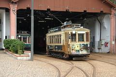 STCP 213--2018_09_17_0781 (phi5104) Tags: trams porto stcp 2018
