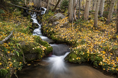 BB Stream 1 (Aaron Spong Fine Art) Tags: stream waterfall falls autumn rmnp brook flowing flow boulder colorado