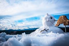 Vienna - Austria (valentinaav7) Tags: snow winter nieve invierno viena vienna austria europa europe cold frio freeze landscape paisaje
