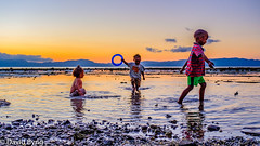 Vusaratu Children Playing at Sunset. (Dave Byng) Tags: 2018 fiji forestcamp operationwallacea southpacific vanualevu vusaratu children beach childrenplaying water ocean