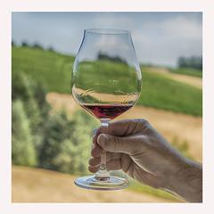Cheers! (jbarc in BC) Tags: wine pinotnoir glass vineyard grapes vino tasting hand cheers sip taste field willamette oregon red redwine alcohol spirits