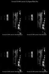 Foveon X3 BW Convert SPP-F (PhotoAnalog) Tags: foveon sigma x3 merrill x3f sd1 artlens dp quattro dpxm dpq dpm photo pro art sensor 3layer fullrgb rgb bw convert by dp1