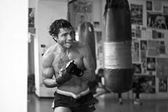 Enzo au shadow (Régis Dubois) Tags: boxeur boxing training miror shadow entrainement miroir muscles spot boxe